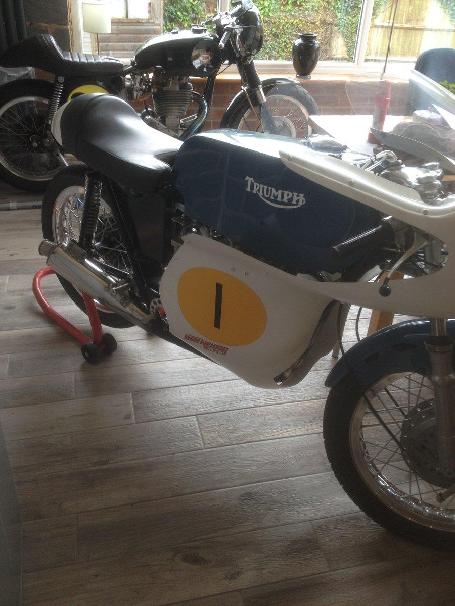 1967 Triumph daytona 200 race bike For Sale (picture 4 of 6)