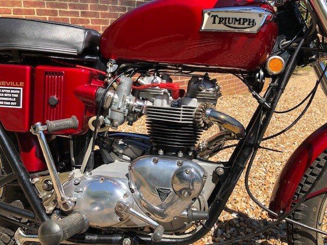 1971 Triumph T120R Re - built For Sale (picture 4 of 4)