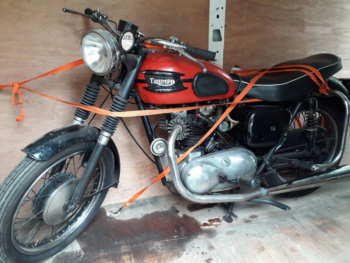 1958 TRIUMPH 6t thunderbird For Sale (picture 1 of 6)