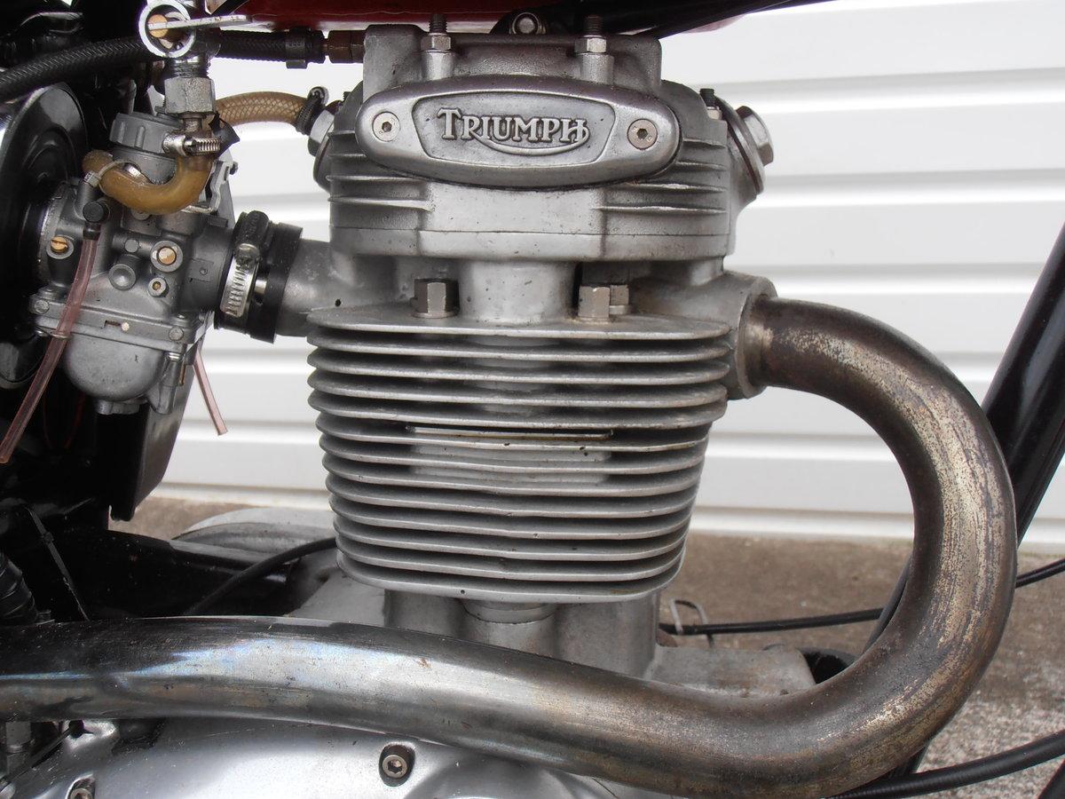 1969 Triumph Trophy TR25W Woodsman (250cc) For Sale (picture 3 of 6)