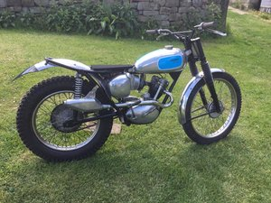 Triumph Trials Cub