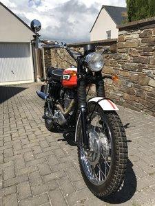 Triumph TR250W (woodsman) Street Scrambler