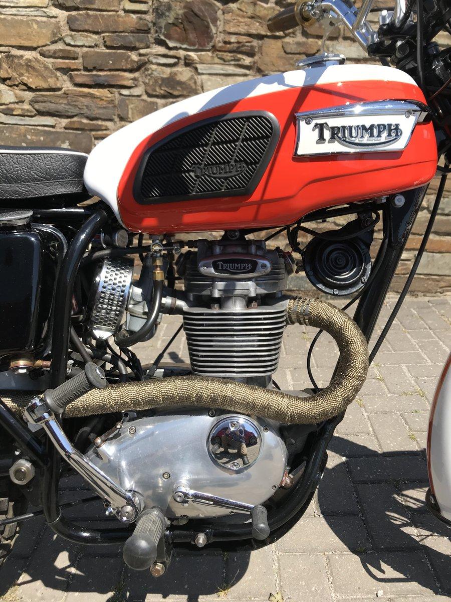 1971 Triumph TR250W (woodsman) Street Scrambler For Sale (picture 3 of 6)