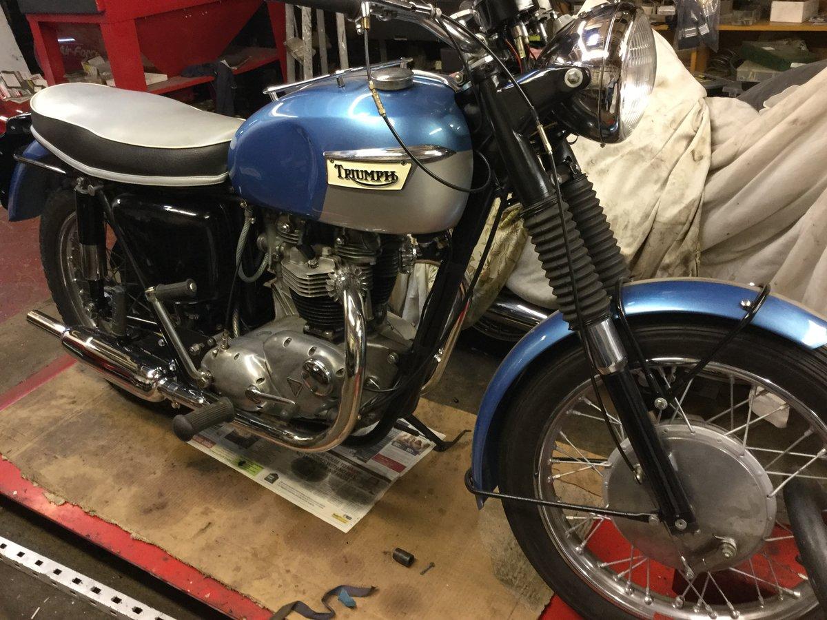 1966 Triumph 650 SOLD (picture 1 of 3)