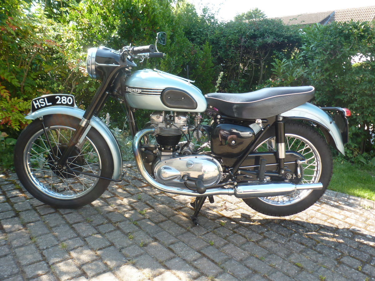 1955 Triumph T110 For Sale (picture 2 of 6)