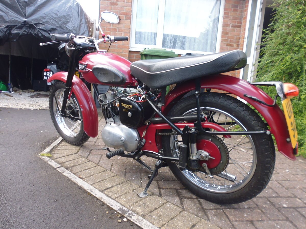 1956 Triumph Tiger Cub plunger For Sale (picture 4 of 6)