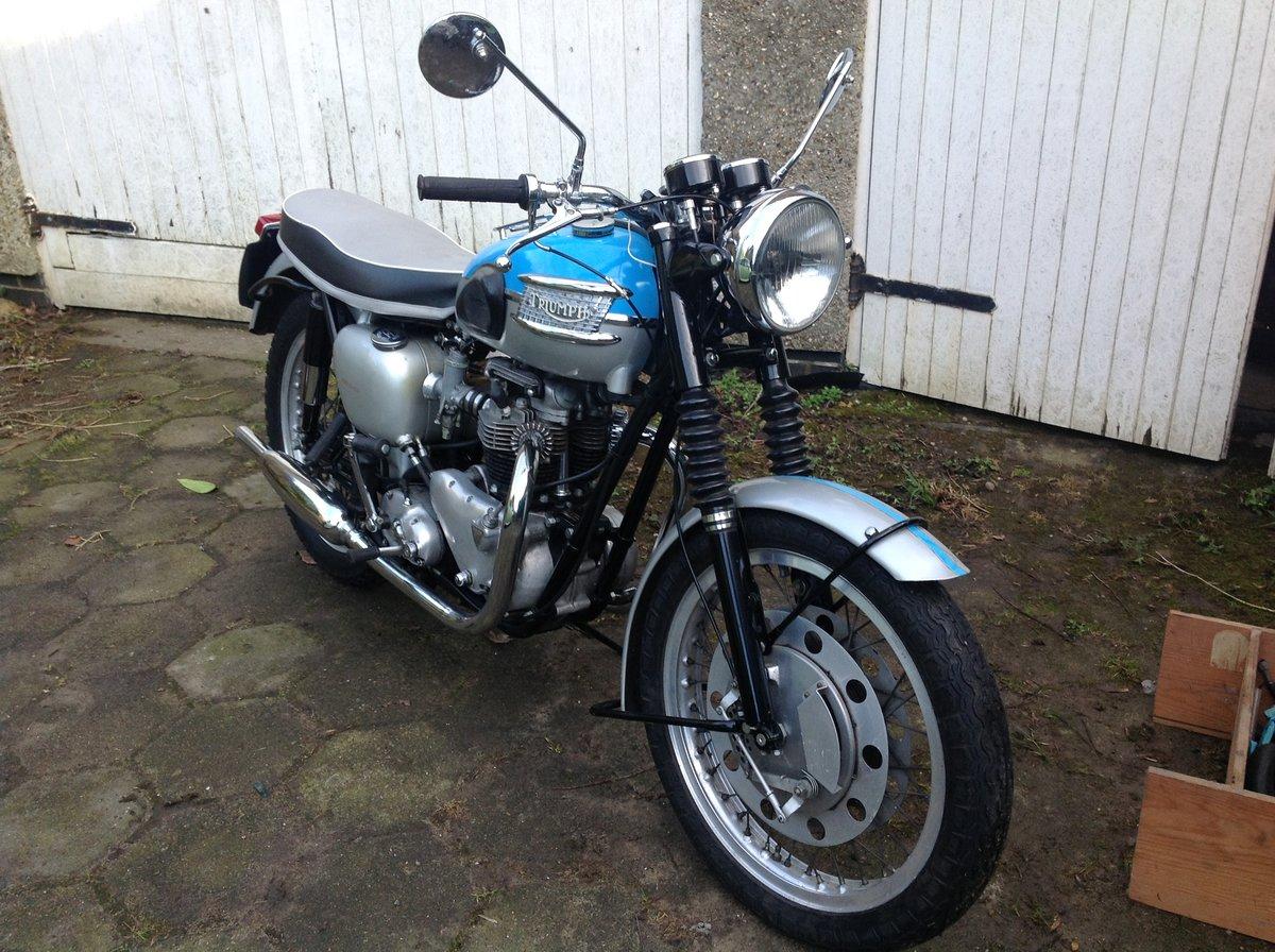 1961 T120R Bonneville Pre-unit 650 For Sale (picture 3 of 6)