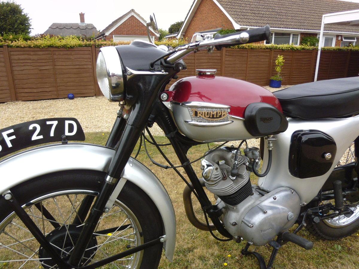 1966 Triumph Tiger Cub SOLD (picture 1 of 6)