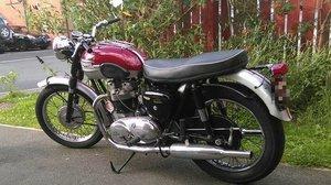 Triumph 650 Thunderbird