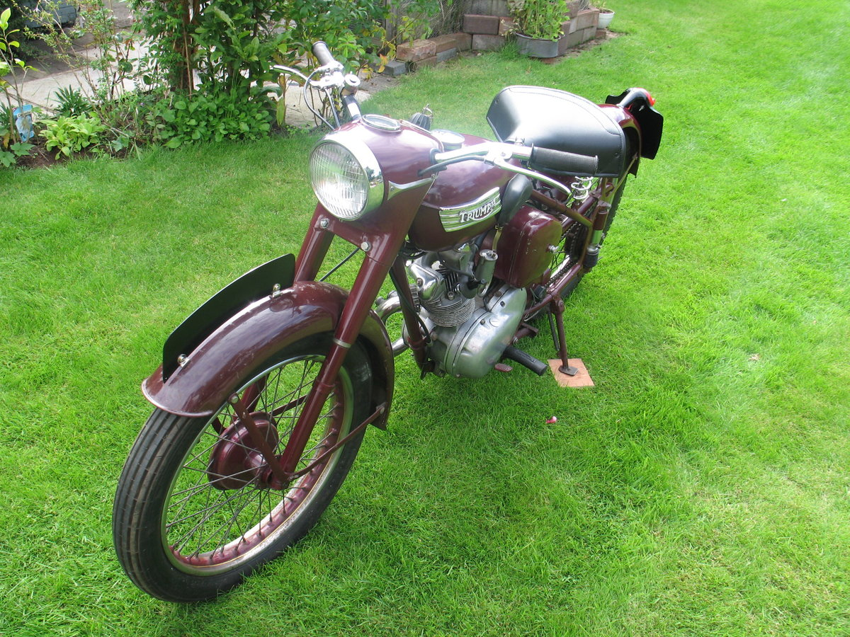1955 Triumph terrier For Sale (picture 3 of 6)