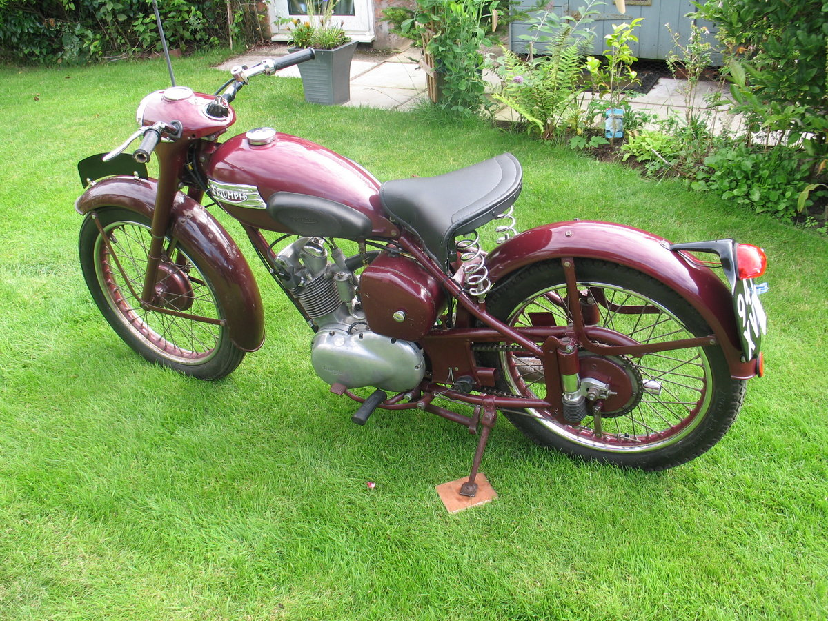 1955 Triumph terrier For Sale (picture 4 of 6)