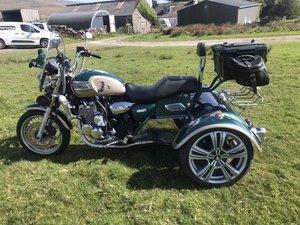 Thunderbird Trike