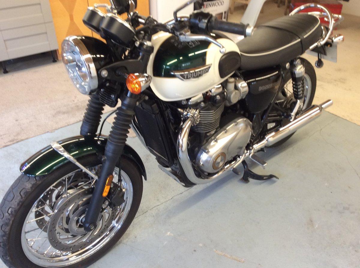 2019 Triumph Bonneville T120 1200cc BARGAIN TO BE HAD   For Sale (picture 1 of 6)