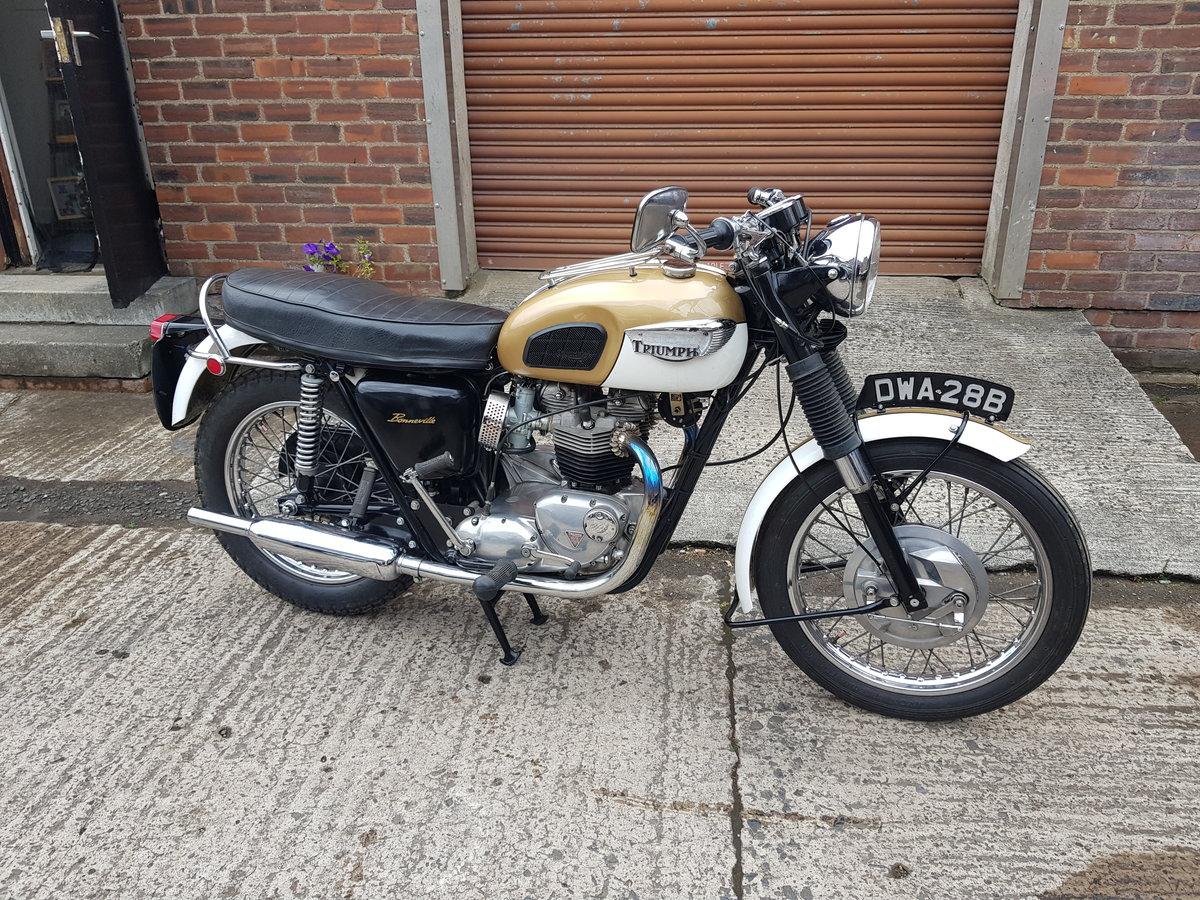 1964 Triumph T120 Bonnie  For Sale (picture 1 of 6)