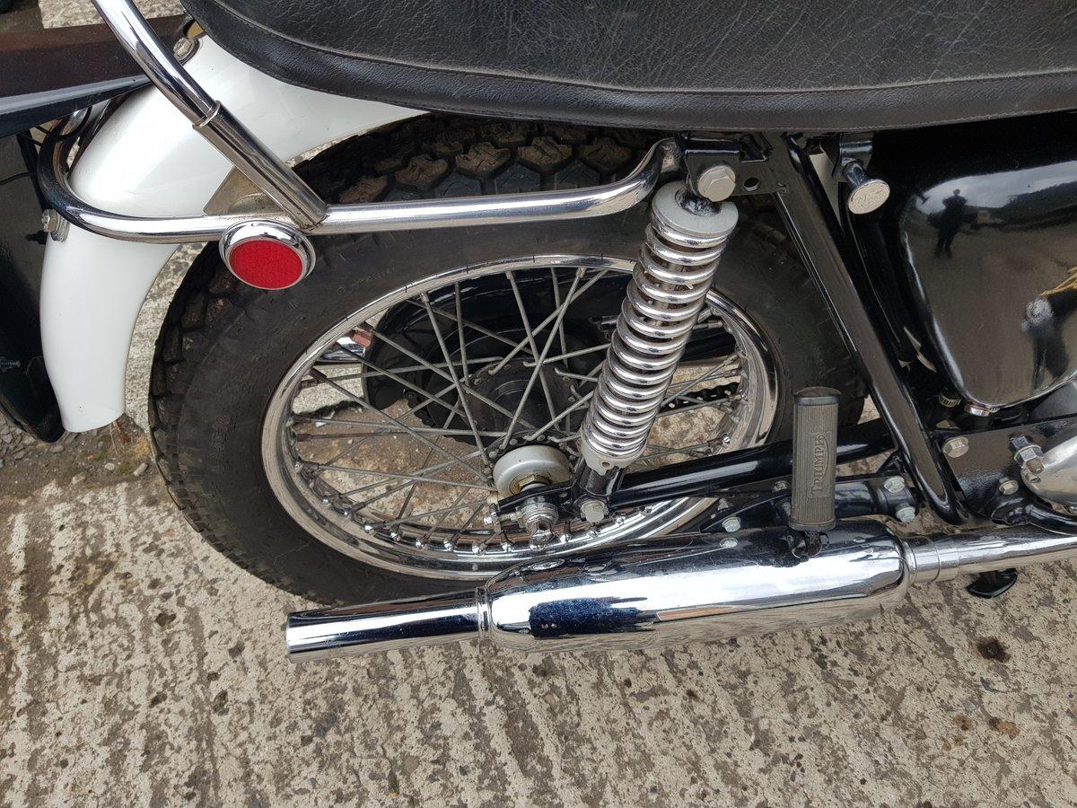 1964 Triumph T120 Bonnie  For Sale (picture 6 of 6)