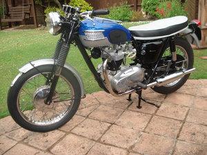 Picture of 1965 Bonneville T120 NOW SOLD