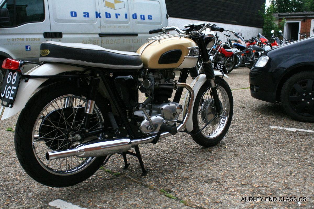 1963 T120 BONNEVILLE For Sale (picture 6 of 6)