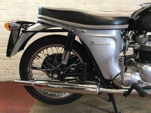 Restored Triumph Thunderbird