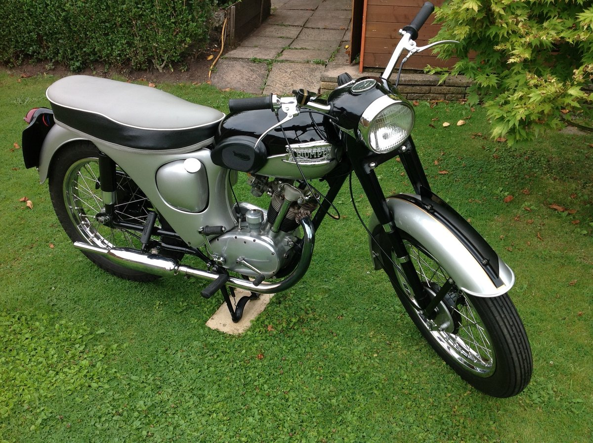 1961 Triumph Tiger Cub  Immaculate For Sale (picture 6 of 6)