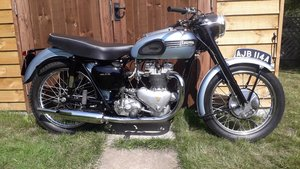 Picture of A 1954 Triumph T100 - 11/11/2020 SOLD by Auction