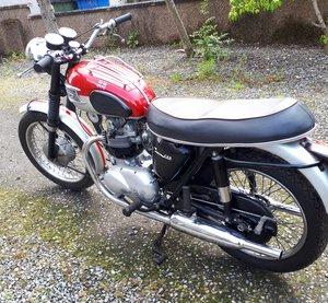 Triumph Tiger 100