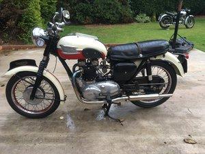 TRIUMPH TIGER T110  1960