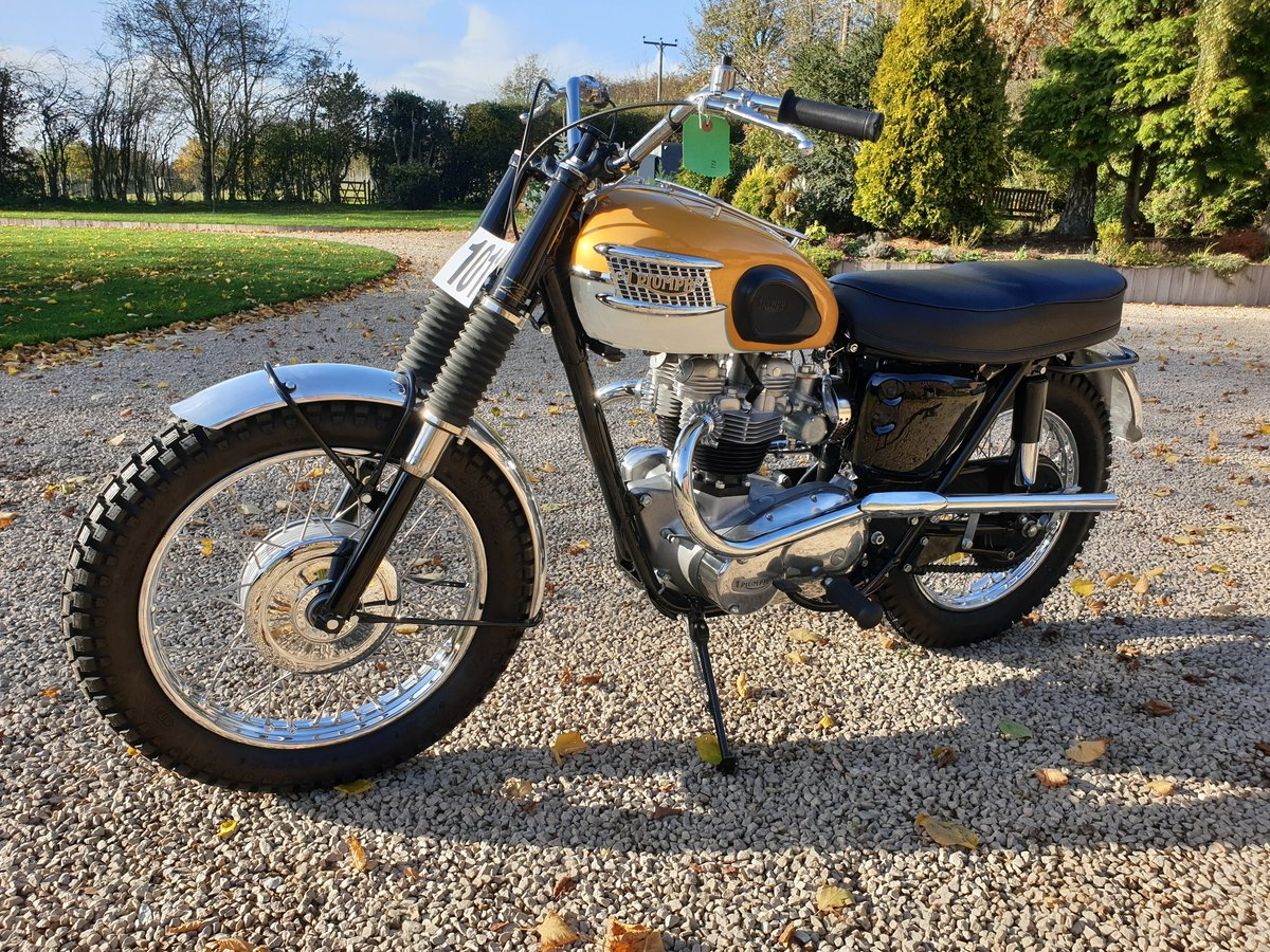 Picture of 1965 Triumph Trophy TR6SC Desert Sled For Sale