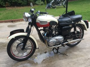 Picture of TRIUMPH TIGER T110  1960   MATCHING NUMBERS SOLD
