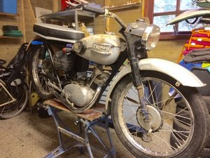 Triumph T20 Tiger Club