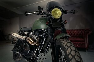 Picture of 2015 Triumph Bonneville Scrambler Mcqueen tribute For Sale