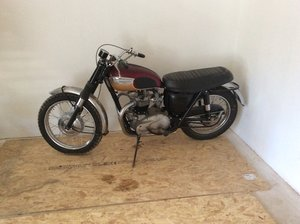 Picture of Triumph T120TT 650cc twin from 1967 For Sale