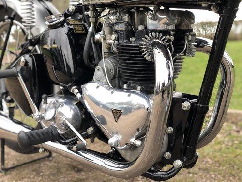 Pre-War Triumph Tiger 100 1939  500cc SOLD (picture 5 of 6)