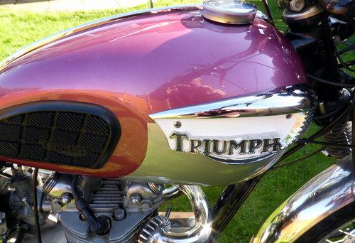 1970 Triumph t100c trophy comp For Sale (picture 4 of 6)