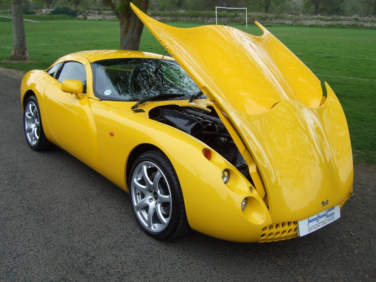 """2000 """"They Call Me Mellow Yellow!"""" For Sale (picture 5 of 6)"""