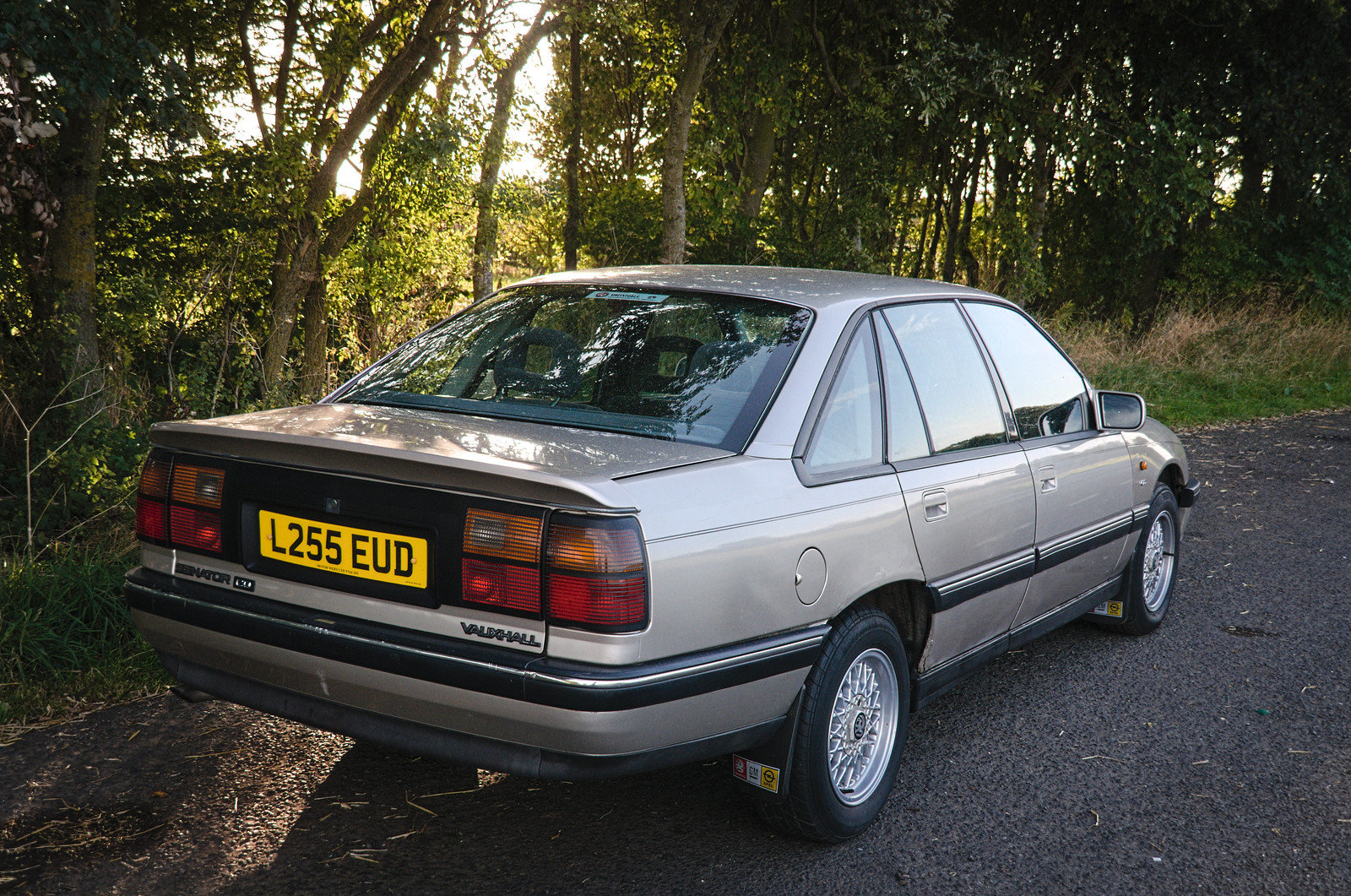 1993 Vauxhall Senator CD 2.6 Auto For Sale (picture 2 of 6)