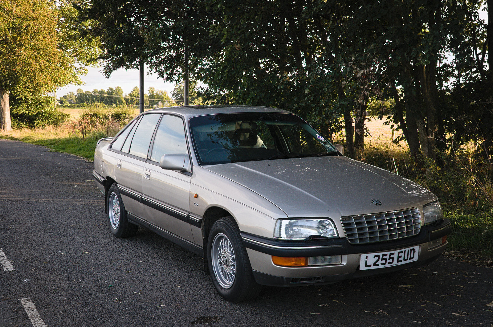1993 Vauxhall Senator CD 2.6 Auto For Sale (picture 5 of 6)