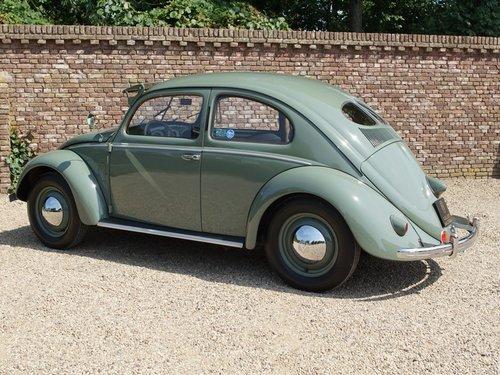 1951 Volkswagen Käfer / Beetle Type 1 splitwindow ! For Sale (picture 2 of 6)