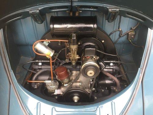 1952 VW Kafer, Volkswagen Beetle, Volkswagen Kever For Sale (picture 5 of 6)