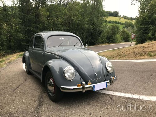 1952 Volkswagen Beetle Standard 1953 For Sale Car And