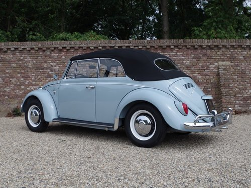 1967 Volkswagen Käfer / Beetle Convertible fully restored !! For Sale (picture 2 of 6)