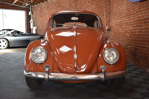 1960 Volkswagen Beetle For Sale (picture 3 of 6)