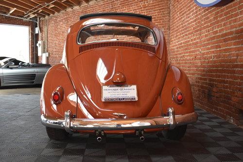 1960 Volkswagen Beetle For Sale (picture 4 of 6)