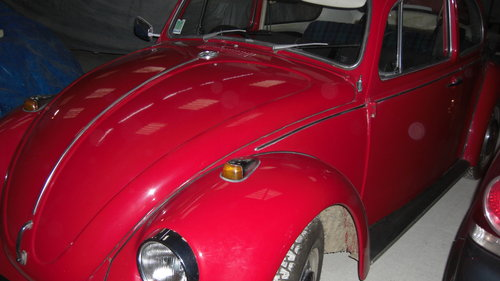 1969 French registered for sale For Sale (picture 1 of 4)
