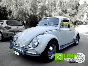 Volkswagen (Typ 11/113) Maggiolino 1200 6 volt (1965) ASI For Sale