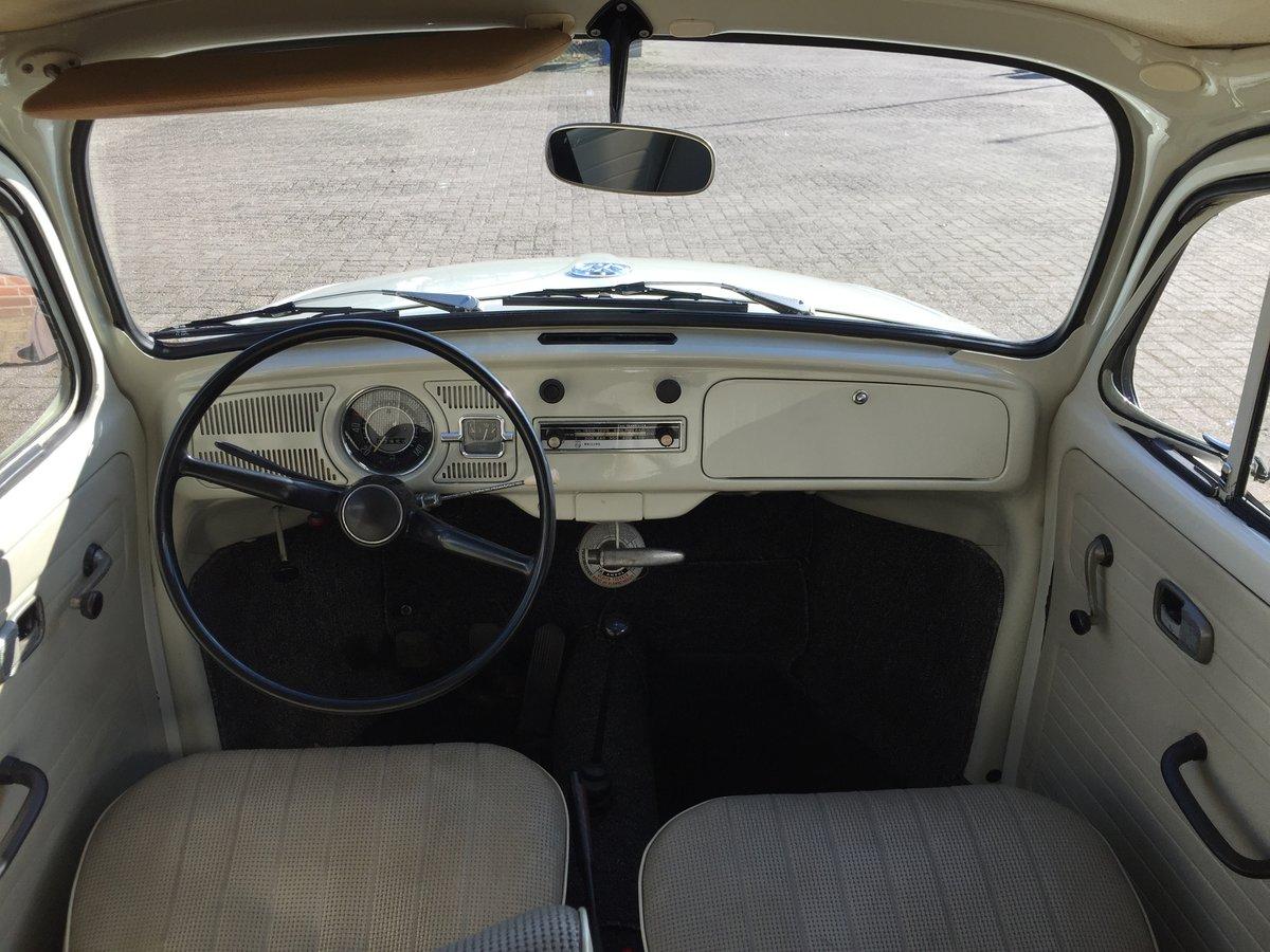 1967 Volkswagen Beetle 1200 'Sparkäfer' LHD For Sale (picture 5 of 6)