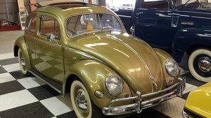 1957 Volkswagen Beetle For Sale