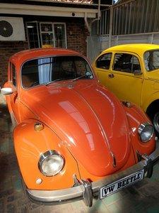 1972 VW Beetle 1600L For Sale