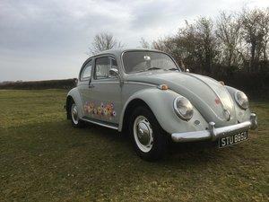 VW classic Beetle 1300 1966 Frontea Grey
