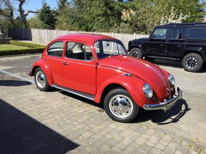 1967 (one year only) Beetle For Sale