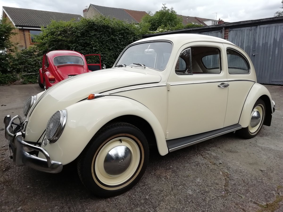 Immaculate 1963 beetle 1200 fully restored For Sale (picture 1 of 6)